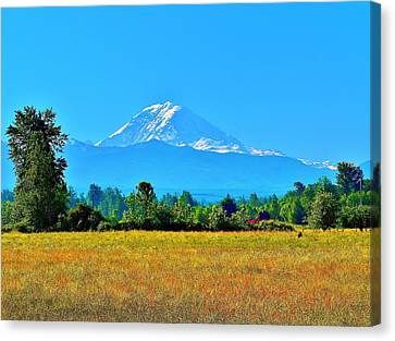 Bovine View Of Mt. Rainier Canvas Print
