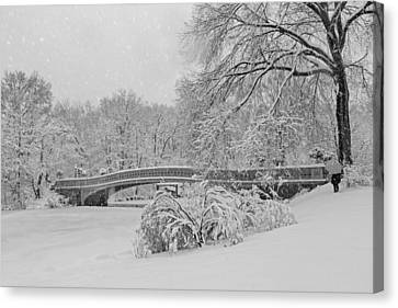 Bow Bridge In Central Park During Snowstorm Bw Canvas Print
