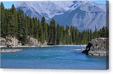 Bow River  Canvas Print by Cheryl Miller