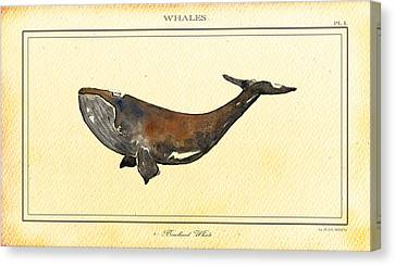 Bowhead Whale Canvas Print by Juan  Bosco