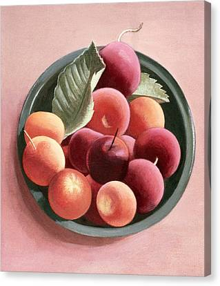 Bowl Of Fruit Canvas Print by Tomar Levine