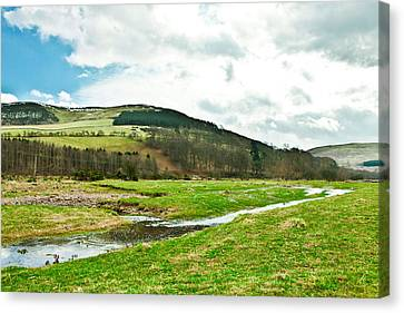 Bowmont Valley Canvas Print by Tom Gowanlock