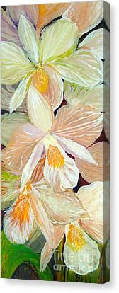 Boxed Orchids Detail Canvas Print by Anna Skaradzinska