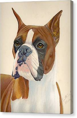 Boxer Dog Canvas Print by Ruth Seal