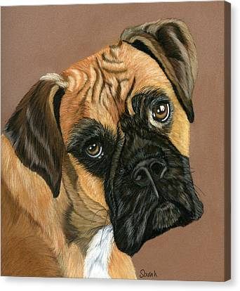 Boxer Dog Canvas Print by Sarah Dowson