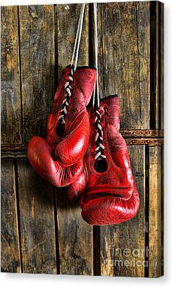 Boxing Gloves - Now Retired Canvas Print by Paul Ward