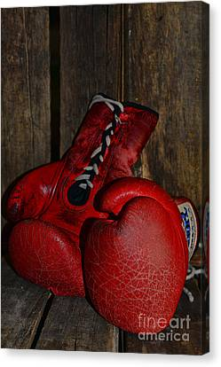 Boxing Gloves Worn Out Canvas Print by Paul Ward