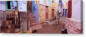 Boy And A Bull In Front Of Building Canvas Print
