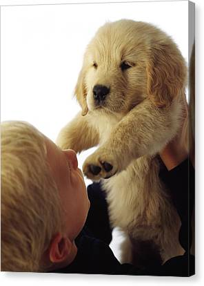 Boy Holding Puppy Up Canvas Print by Ron Nickel