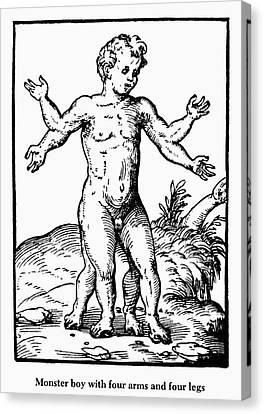 Boy Monster, 1573 Canvas Print by Granger