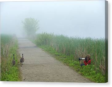 Boy Photographing A Pair Of Geese Canvas Print by Tim Laman