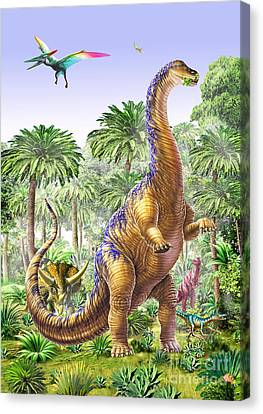 Feeding Canvas Print - Brachiosaur by Adrian Chesterman