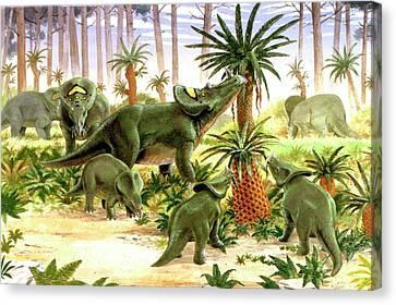 Brachyceratops Dinosaurs Canvas Print by Deagostini/uig