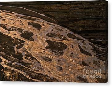 Braided River, Denali National Park Canvas Print by Ron Sanford