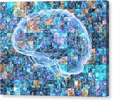 Brain Over Pixelated Background Canvas Print by Alfred Pasieka