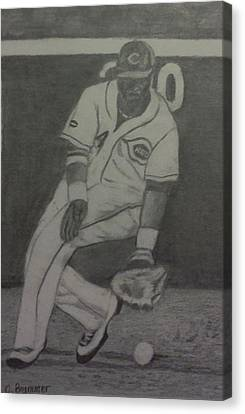 Brandon Phillips Canvas Print by Christy Saunders Church