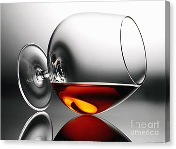 Brandy Snifter Canvas Print by Tony Cordoza