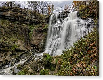 Brandywine Falls Canvas Print by James Dean