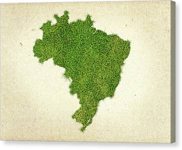 Brazil Grass Map Canvas Print by Aged Pixel