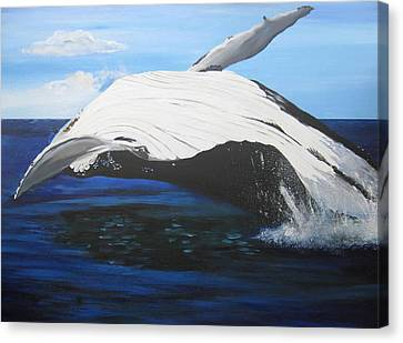 Breaching Whale Canvas Print by Cathy Jacobs