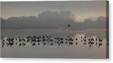 Break Of A New Day Canvas Print