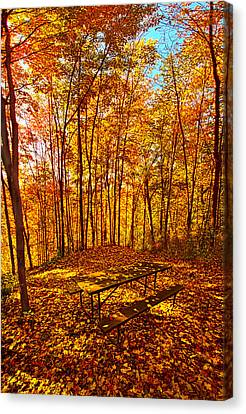 Picnic Table Canvas Print - Break Time by Phil Koch