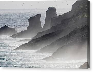 Sea Birds Canvas Print - Breakers And Spray, The Cliffs by Martin Zwick