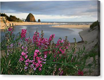 Breakers Point Oregon Canvas Print by Steven A Bash