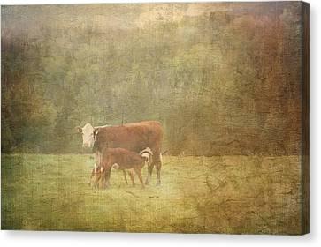 Breakfast  Canvas Print by Betty  Pauwels