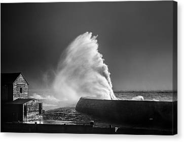 Breaking Wave Canvas Print by Tim Booth