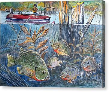 Bream Fishing Canvas Print