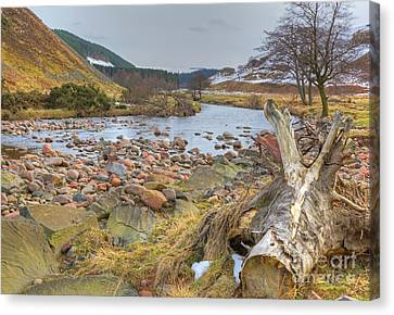Breamish Valley Landscape Canvas Print by David Birchall