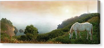 Breath Of Early Morning Canvas Print by David M ( Maclean )
