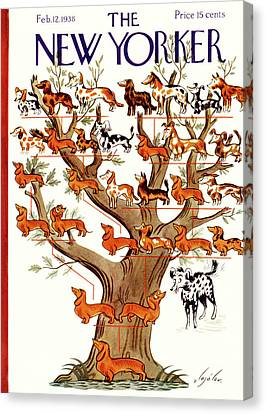 Cal Canvas Print - Breeds Tree by Constantin Alajalov