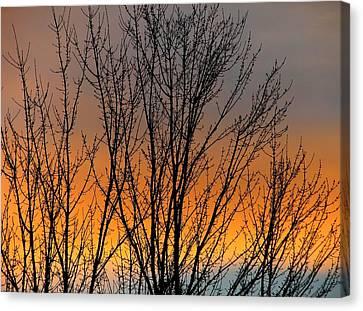 Breezeful Canvas Print