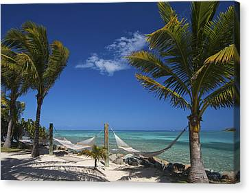 Breezy Island Life Canvas Print by Adam Romanowicz