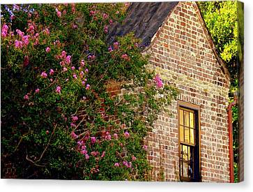Canvas Print featuring the photograph Brick And Myrtle by Rodney Lee Williams