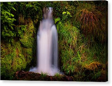 Bridal Dress. Waterfall At Benmore Botanical Garden. Nature Of Scotland Canvas Print by Jenny Rainbow