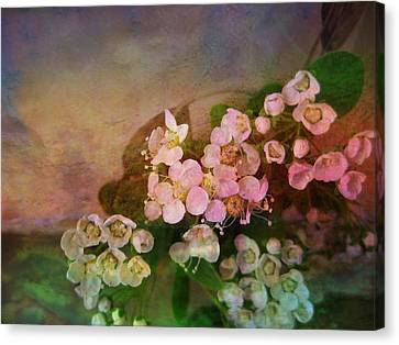 Bridal Memories Canvas Print by Shirley Sirois