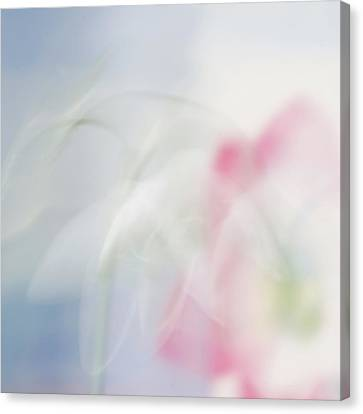 Canvas Print featuring the photograph Bridal Veil by Annie Snel
