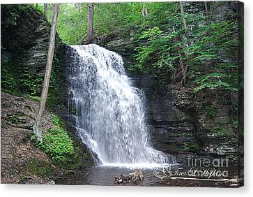 Bridal Veil Falls 20120608_23 Canvas Print