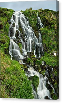 Bride's Veil Waterfall Canvas Print by Stephen Taylor