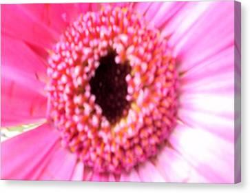 Bridesmaid Pink Canvas Print