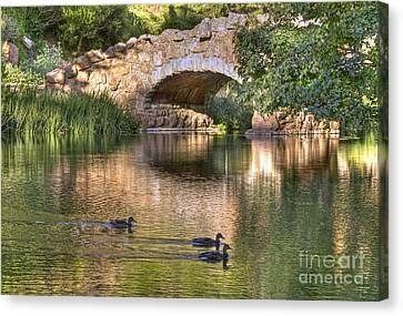 Canvas Print featuring the photograph Bridge At Stow Lake by Kate Brown