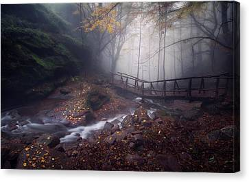Bridge In Mystical Forest. Canvas Print