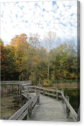 Bridge Into Autumn Canvas Print by Guy Ricketts