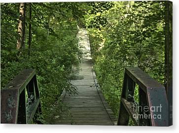 Bridge Into The Woods Canvas Print