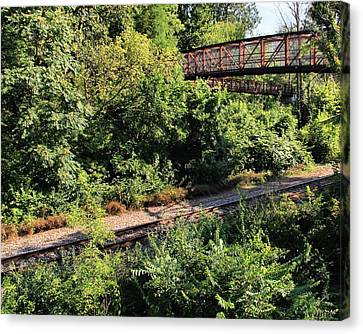 Bridge Over Train Canvas Print