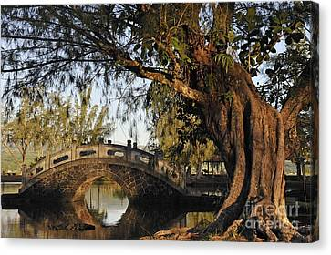 Bridge Over Water At Japanese Garden Canvas Print by Sami Sarkis