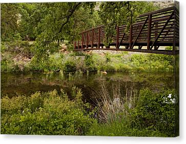 Bridge Over Wetlands Canvas Print